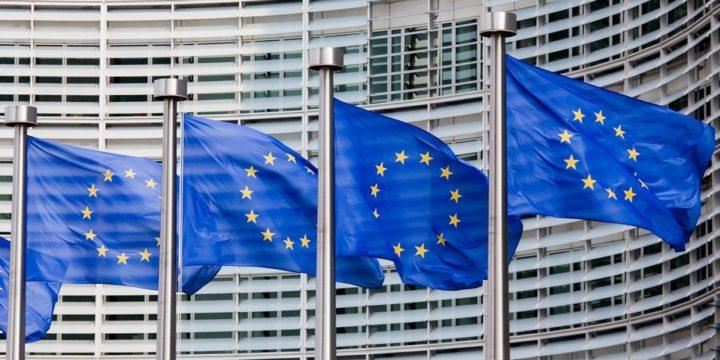 Objava biračima; Raspisani izbori za članove u Europski parlament iz Republike Hrvatske